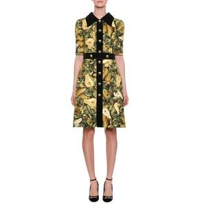 Dolce and Gabbana Pear-Print Brocade A-line Dress